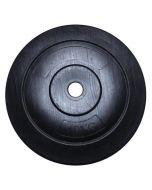 Disco Pesi  Vinile 10 KG 25 mm